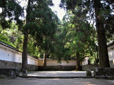 4本の杉の木