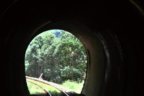 肥薩線車窓 9