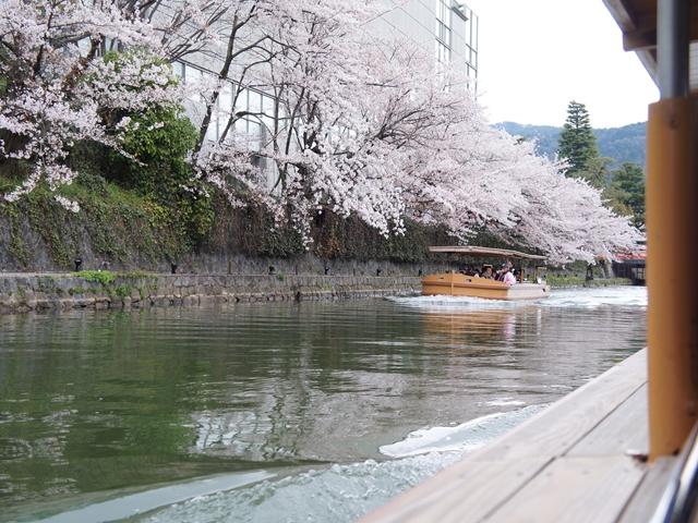 20140406KyotoS076s.jpg