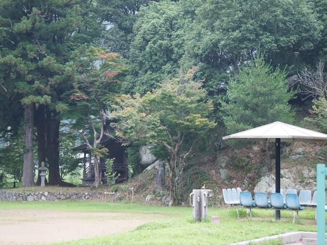 20140716ShibataS050s.jpg