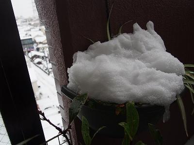 s-大雪2