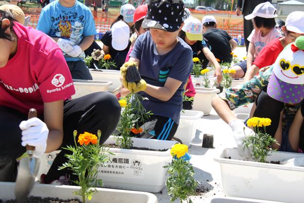 20140603人権の花運動