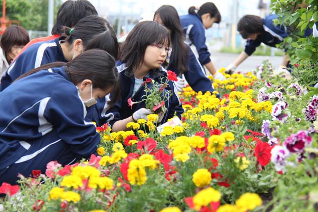 20140620中学生ボランティア