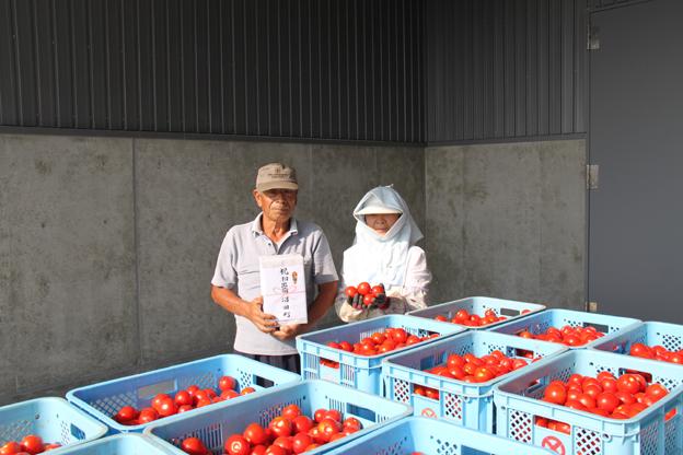 20140801トマト初出荷