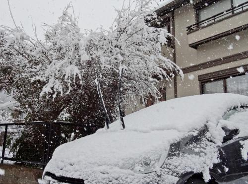 またまた大雪です!
