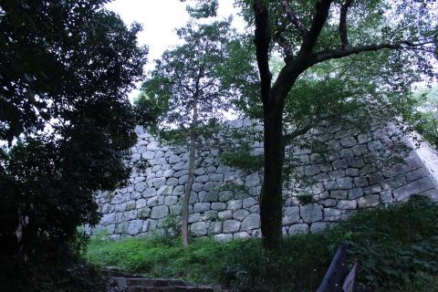 shikoku-04.jpg