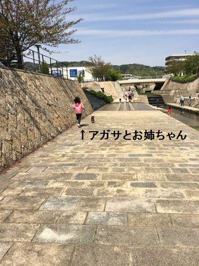 IMG_5241.jpg