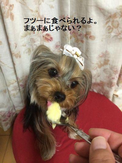 IMG_5454.jpg