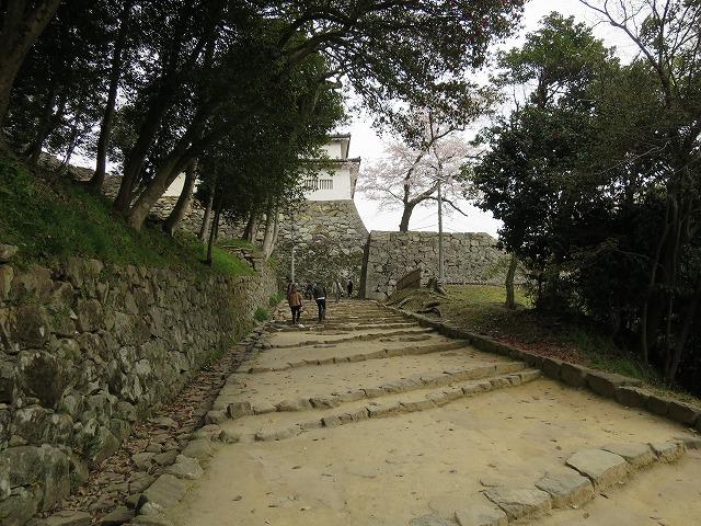 彦根城 (9)