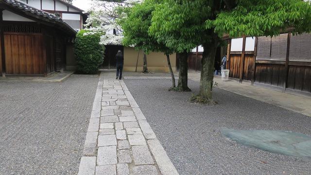 大徳寺 (7)