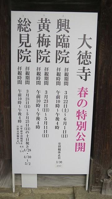 大徳寺 (3)