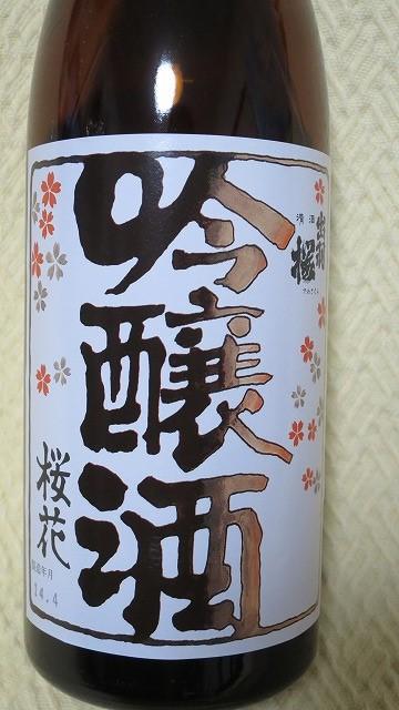 出羽桜 桜花 (12)