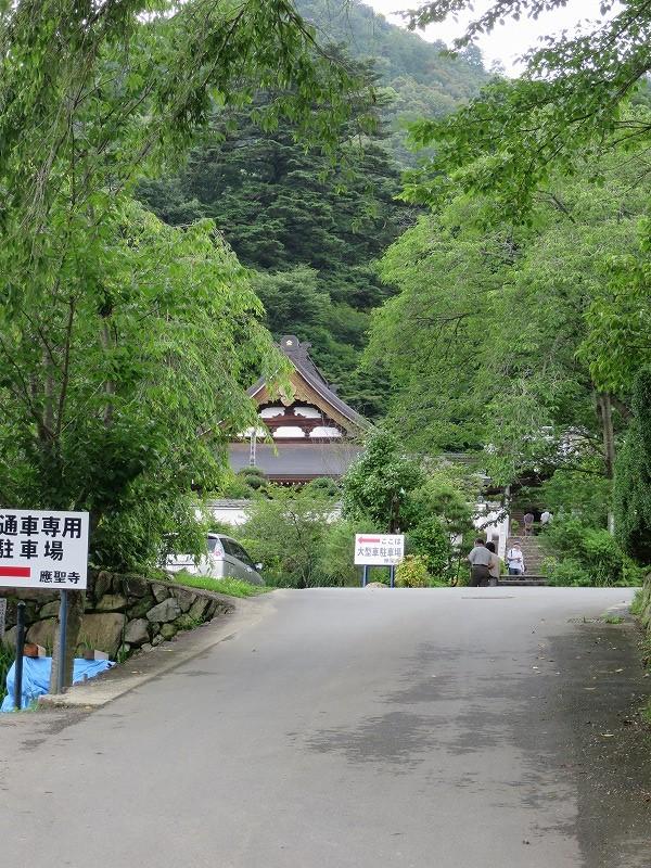 20140706 沙羅双樹(應聖寺) (10)
