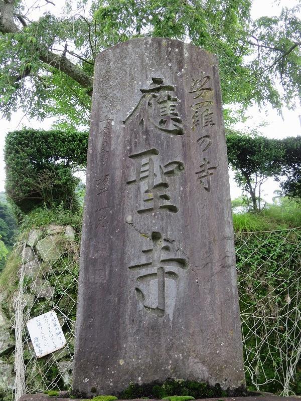 20140706 沙羅双樹(應聖寺) (11)