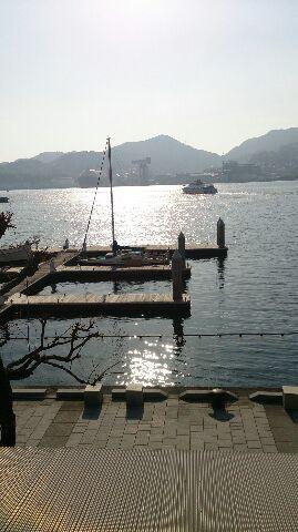 長崎港トンビ