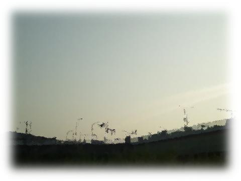 140727tamagawa11.png