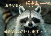 yjimage_201405271144123c3.jpg