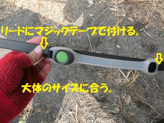 20140225-01.jpg