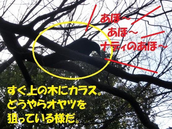 2014029-02.jpg