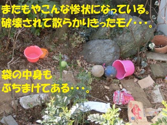 2014032-02.jpg