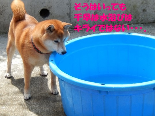 水浴び1-05