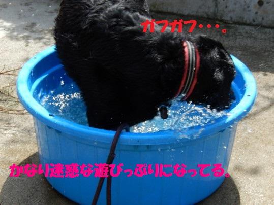 水浴び1-03