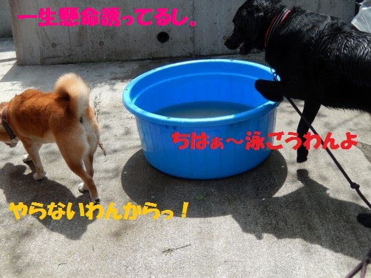 水浴び1-10