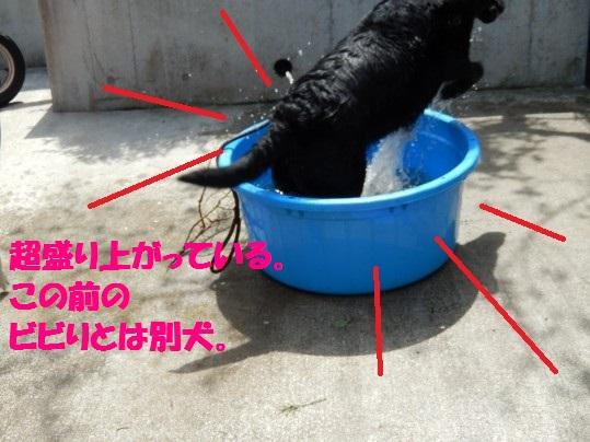 水浴び1-09
