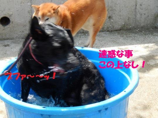 水浴び1-08