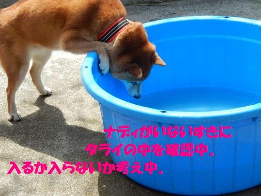 水浴び1-06