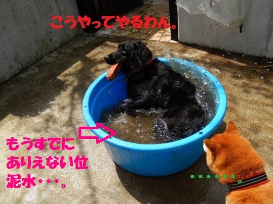 水浴び1-12