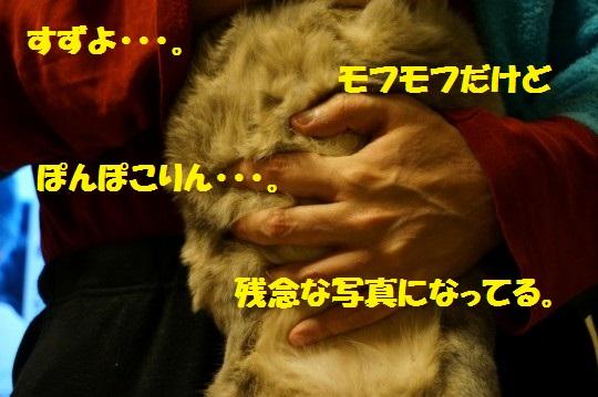 すず1-04