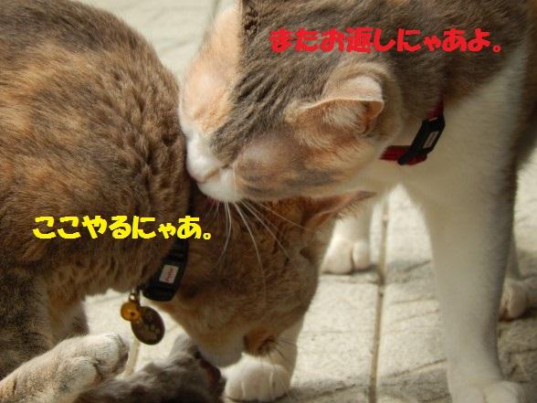 おかえし1-03