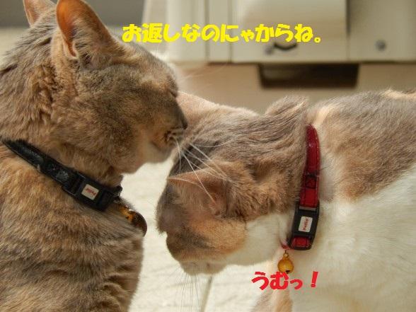 おかえし1-02