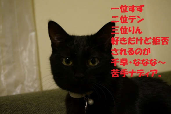 201405-03.jpg