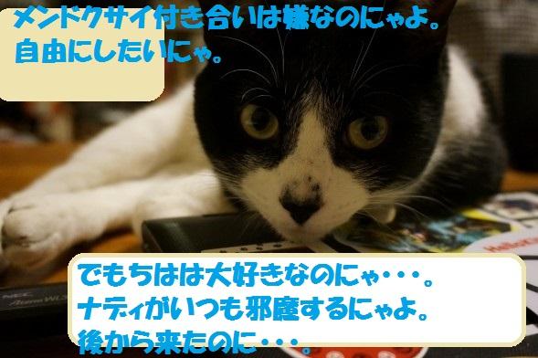 201405-10.jpg