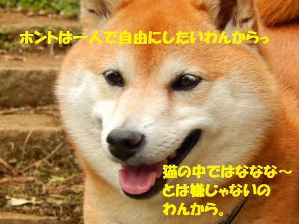 201405-12.jpg