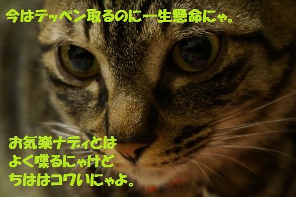 201405-14.jpg