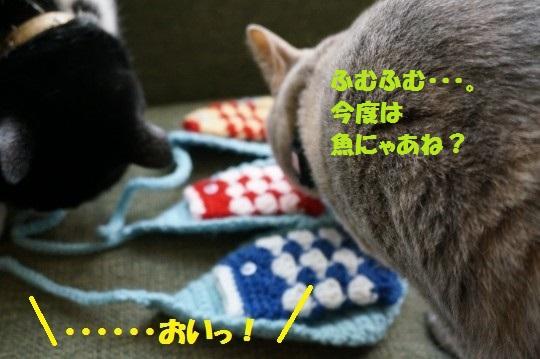 こいのぼり1-04