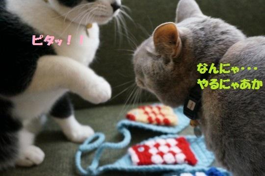 こいのぼり1-05