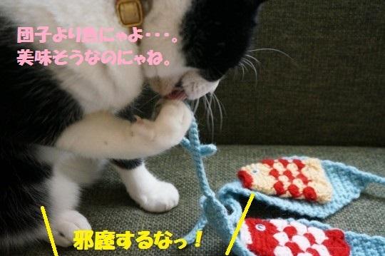 こいのぼり1-03