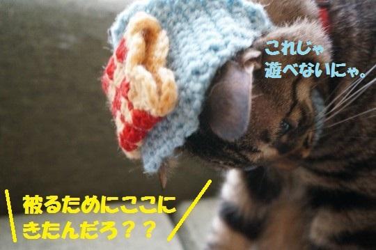 こいのぼり1-08