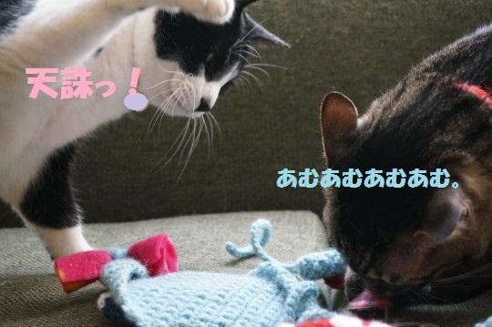 こいのぼり1-13