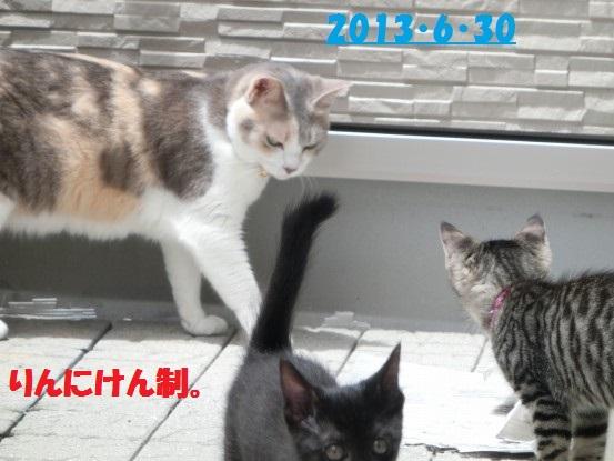 20140514-01.jpg