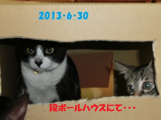 20140514-09.jpg