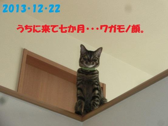 20140515-01.jpg