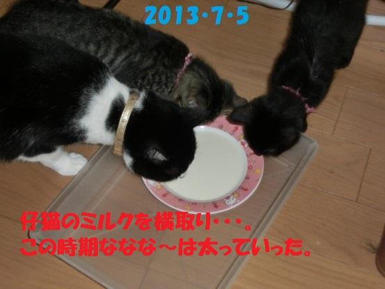 20140515-07.jpg