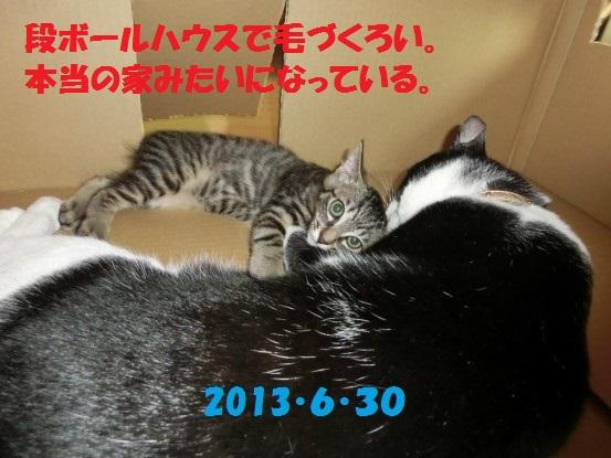 20140515-09.jpg