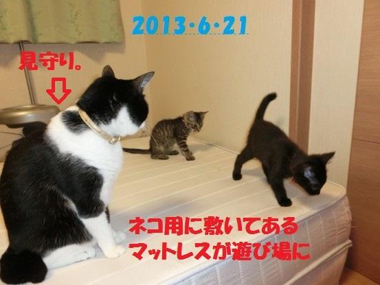 20140515-12.jpg