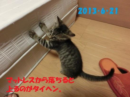 20140516-05.jpg